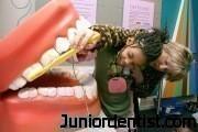 Dental Museum