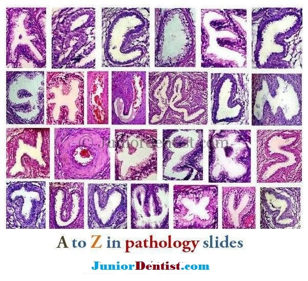 Alphabet like Histology Slides of various diseases