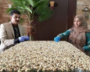 dentist with 10000 teeth collection eyeing Indian Limca Records